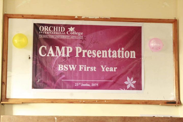 Students Of Bsw I Year Presented The Report On The
